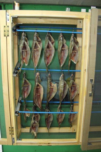 Камеры для рыбы как сделано 2