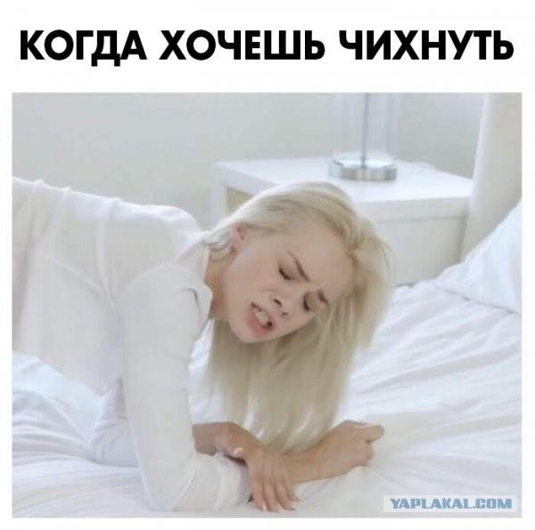 Анекдот Про Девочку Которая Чихнула