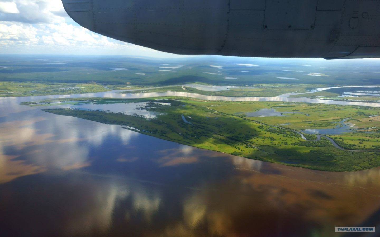 В какой стране река амазонка