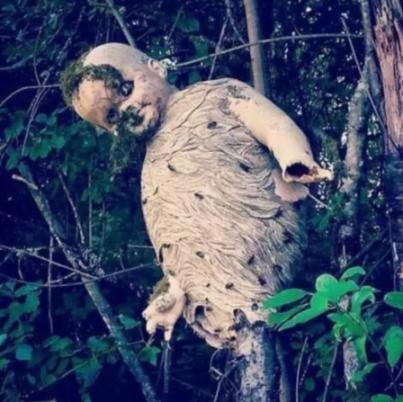 22 фотографии, которые доказывают, что природа тоже может быть очень пугающей