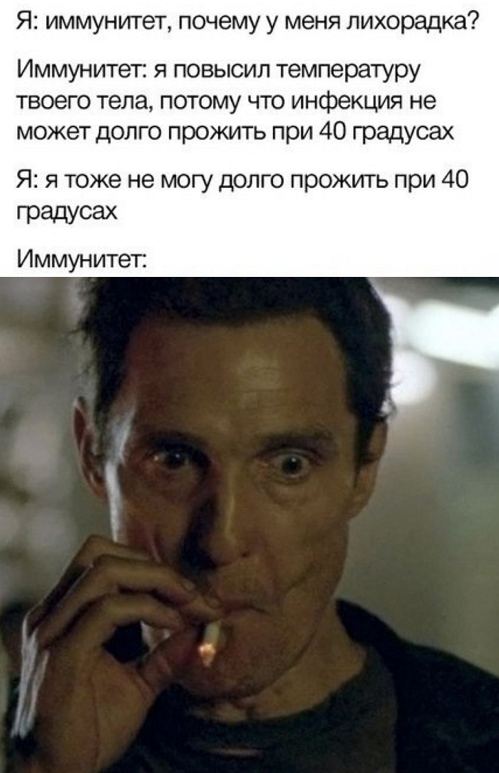 12327145.jpg