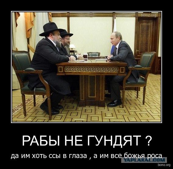 США хотят разместить в Европе 5-тысячную бригаду из-за агрессии РФ - Цензор.НЕТ 558
