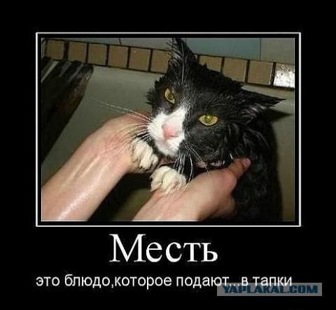 http://s00.yaplakal.com/pics/pics_original/5/4/9/2268945.jpg