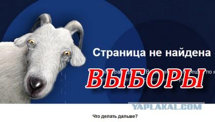 Роскомнадзор заблокировал сайты с призывами к бойкоту выборов в Думу