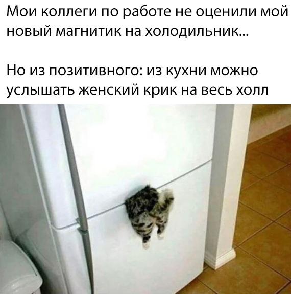 http://s00.yaplakal.com/pics/pics_original/5/5/7/13617755.jpg