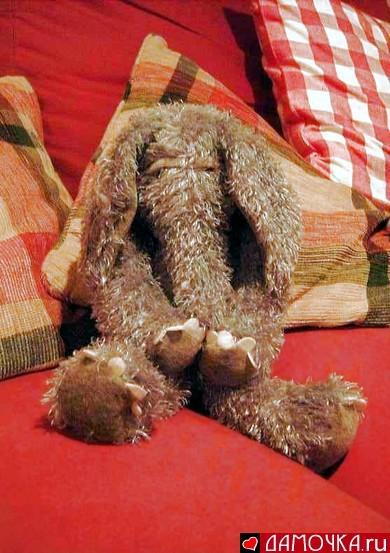 СЛОНЫ. Фотографии слонов, прикольные слоны!