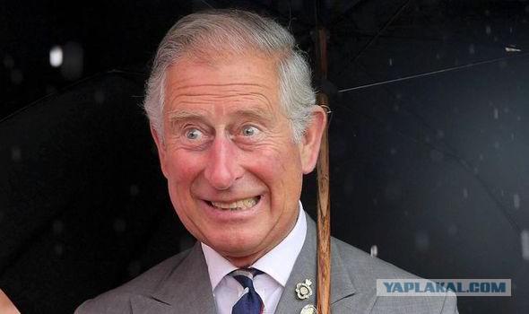 Принц Чарльз назвал причину войны в Сирии