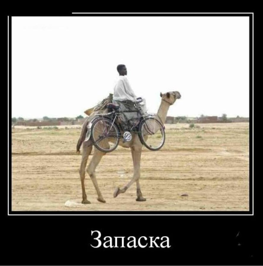 http://s00.yaplakal.com/pics/pics_original/5/6/5/13042565.jpg