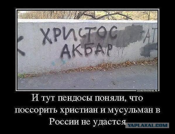 http://s00.yaplakal.com/pics/pics_original/5/6/6/4624665.jpg