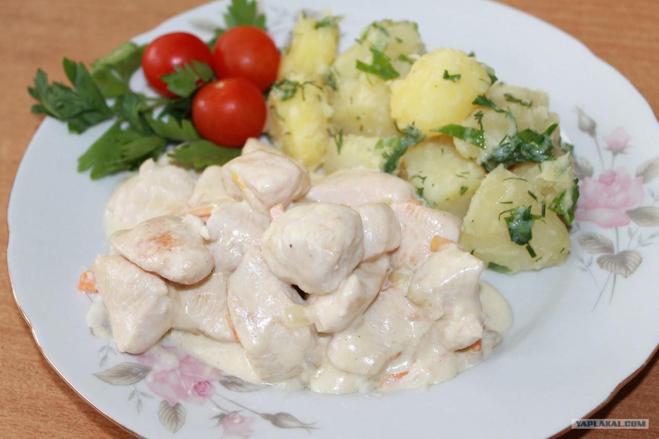 Подлив из куриного филе со сметаной рецепт