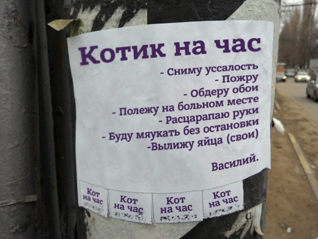 http://s00.yaplakal.com/pics/pics_original/5/6/8/9386865.jpg