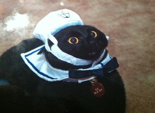 кот лодка готова мой капитан
