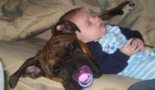25 малышей, которые идеально овладели техникой сна