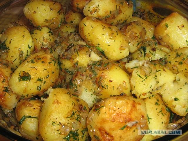 Жареная круглая картошка
