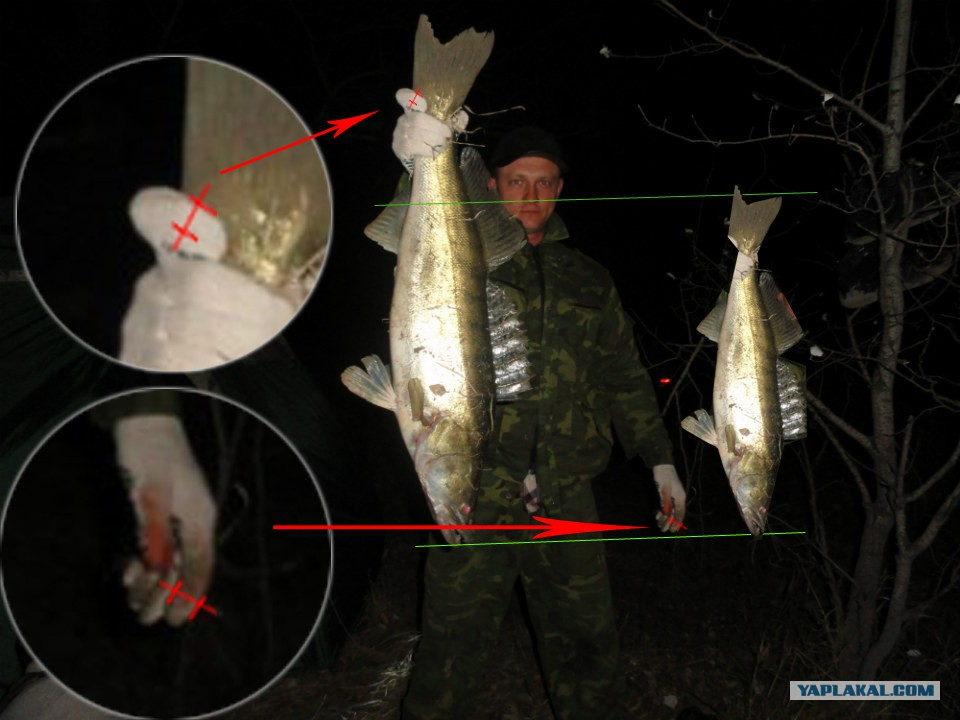 на что ловится рыба матрешка