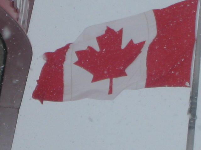 флаг кленовый лист