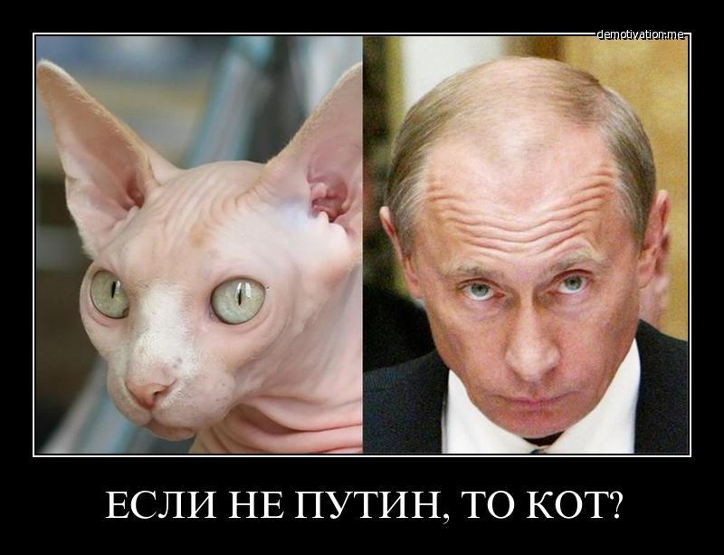 """80% бюджета """"Самопомич"""" потратила на поддержку Гусовского, - Садовый - Цензор.НЕТ 9724"""