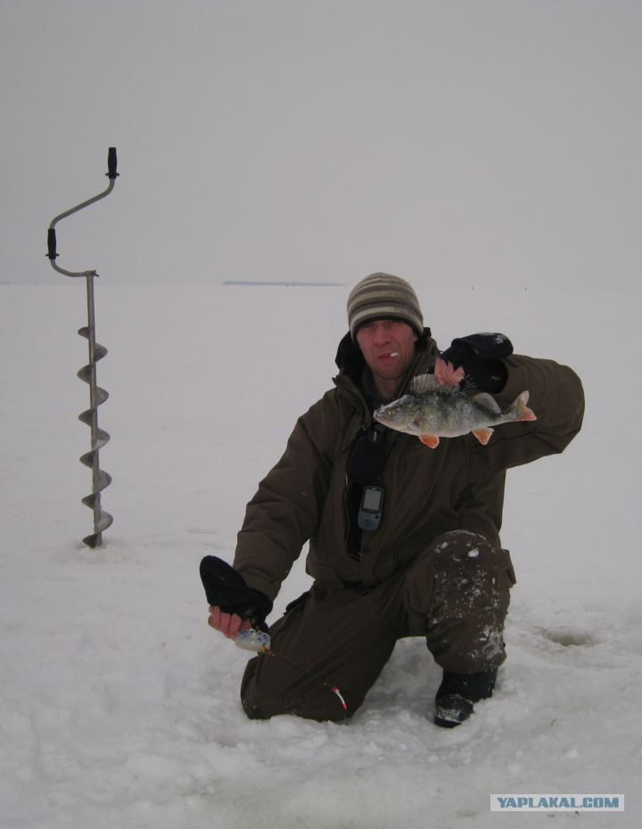 зимняя рыбалка с fishhungry