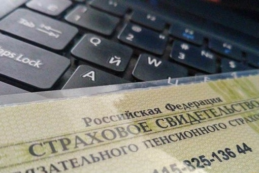 В России больше не будут выдавать бумажные СНИЛС.