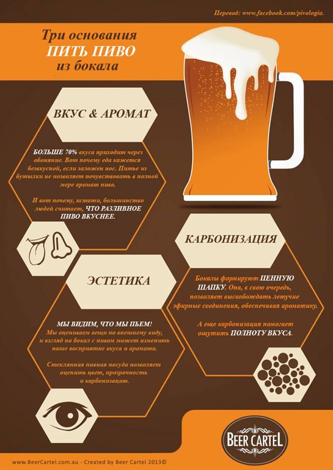 руководство по типам пива - фото 11
