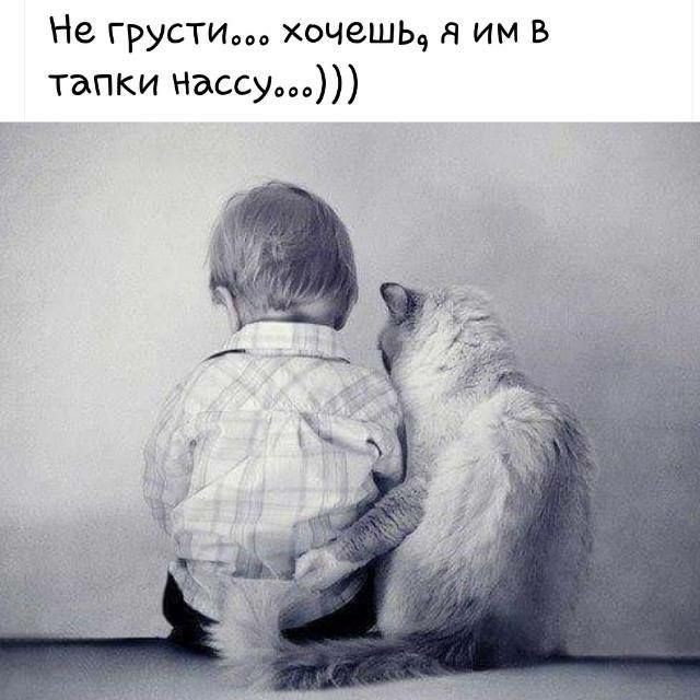 http://s00.yaplakal.com/pics/pics_original/6/0/0/12343006.jpg
