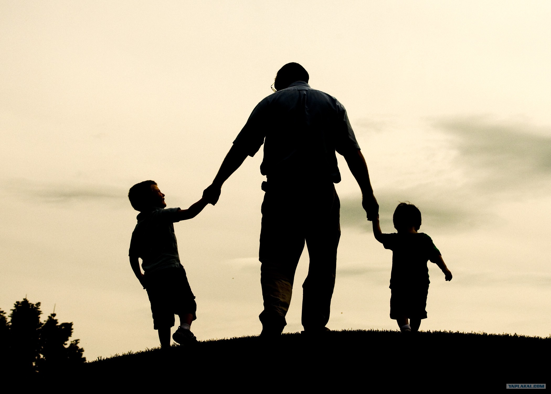 fathers family and father Father facts 7 t he premier reference manual for anyone interested in promoting responsible fatherhood and being a great dad, father facts 7 is the most comprehensive father absence and father involvement research available in one publication.