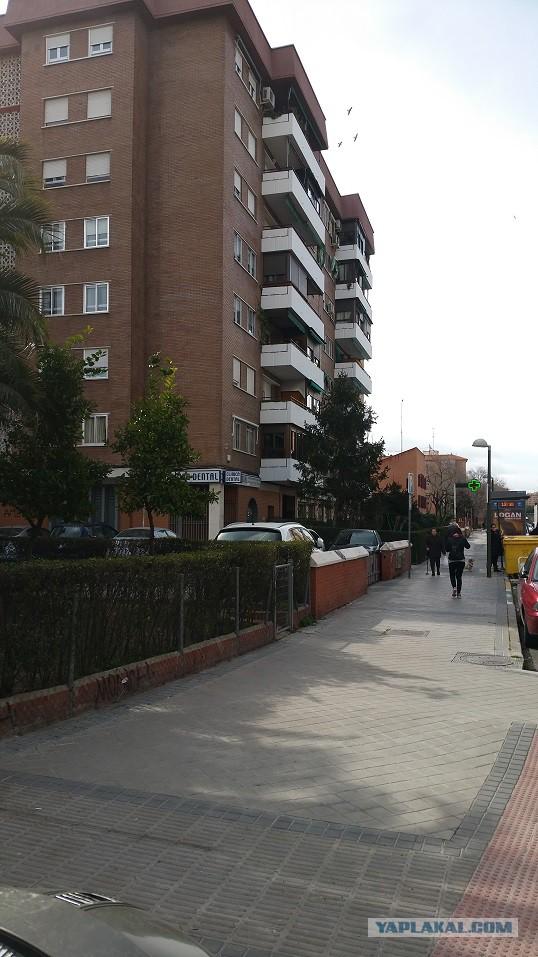 Настоящая Испания изнутри: на местный рынок за продуктами