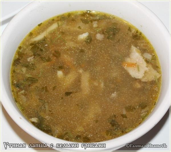 Суп домашняя лапша из утки рецепт