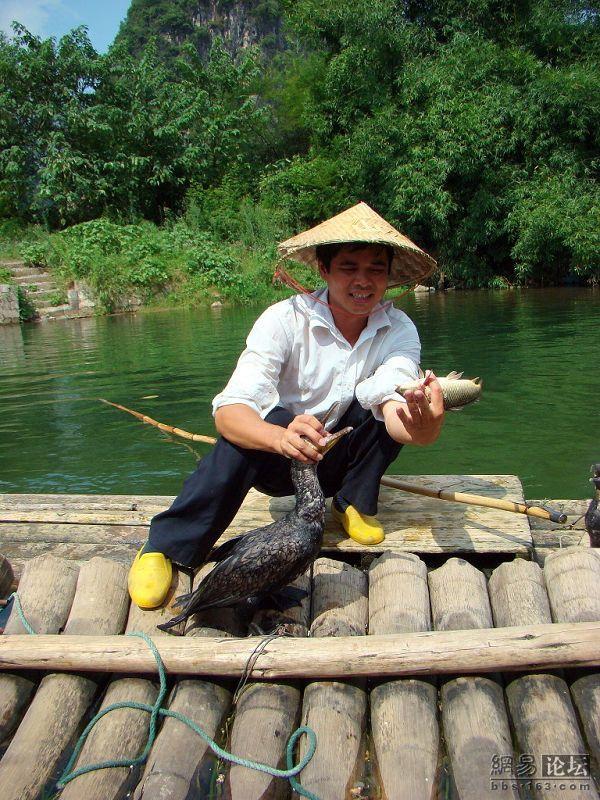 Рыбалка с ручными бакланами