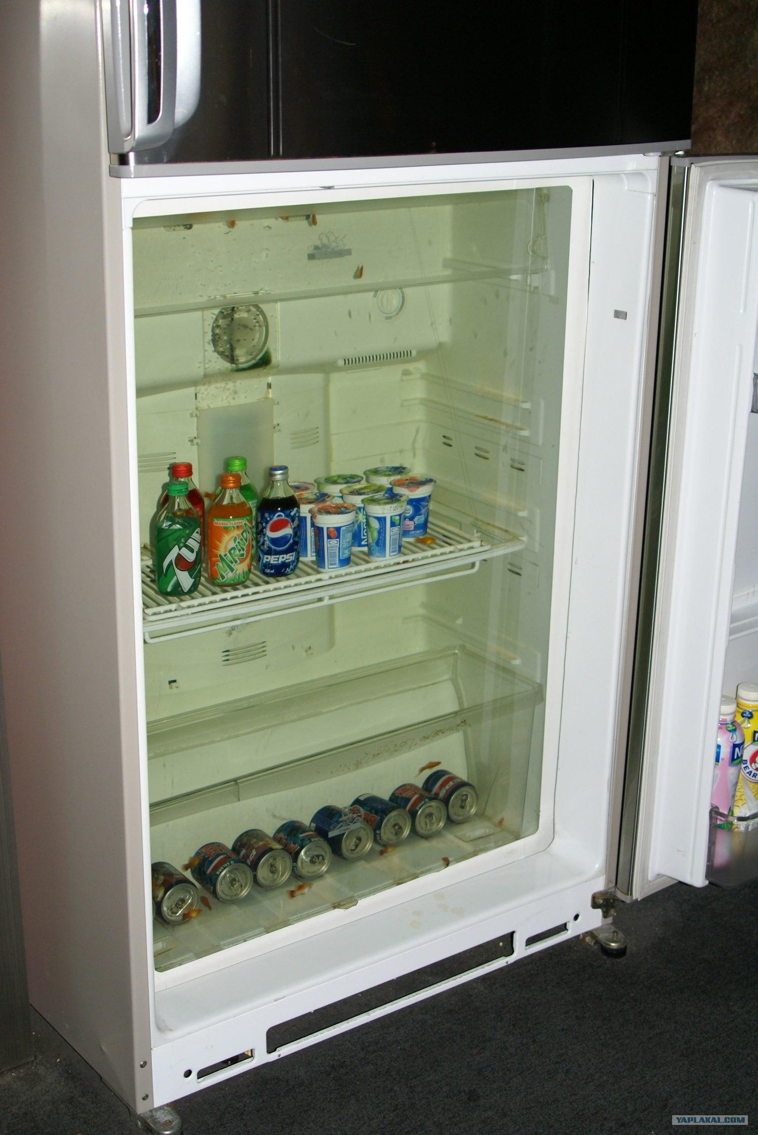 Холодильник аквариумный
