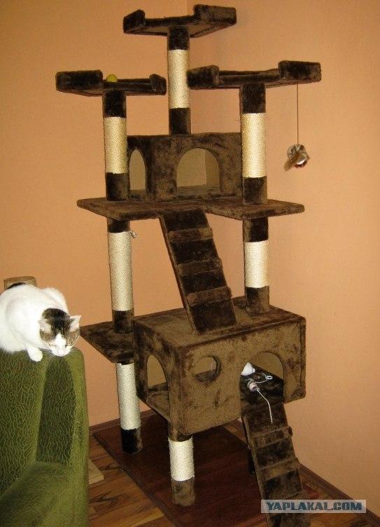 Простой кошкин дом своими руками 51