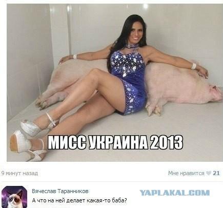 http://s00.yaplakal.com/pics/pics_original/6/2/3/3954326.jpg