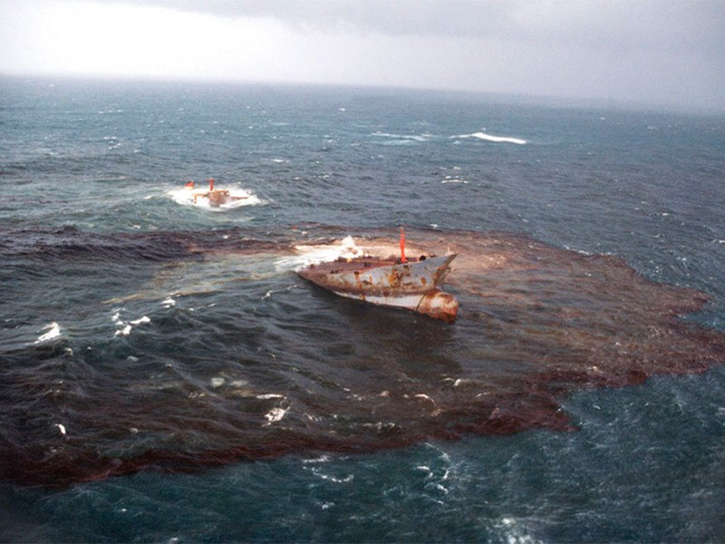 the resulting devastation of the january 16th oil tanker spill nearby the galapagos island