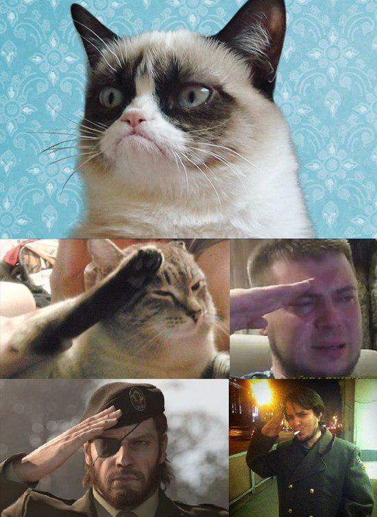 Grumpy Cat умер