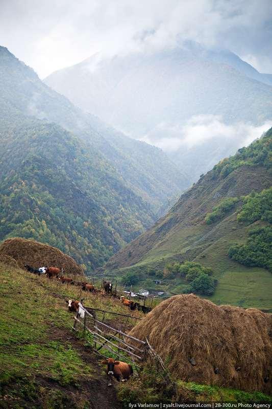 Ингушетия - горы и родовые башни