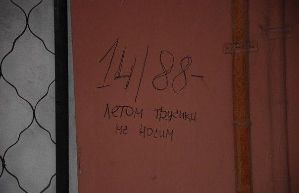 6811836.jpg
