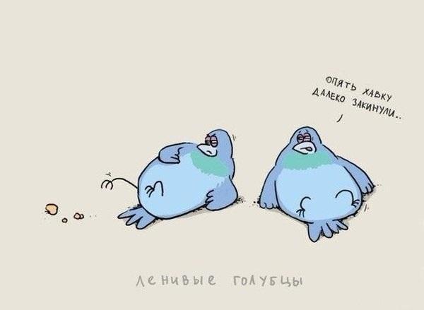 Иногда очень лень