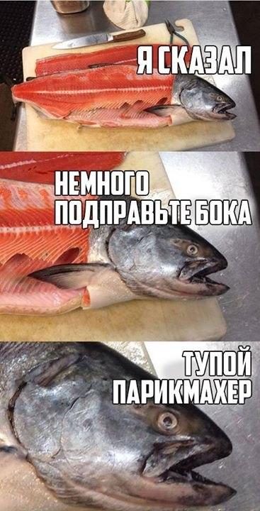 http://s00.yaplakal.com/pics/pics_original/6/4/4/10886446.jpg