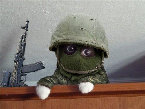 СБУ предлагает представителю России наблюдать за антитеррористической операцией - Цензор.НЕТ 8101