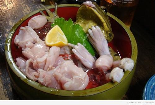 Топ-5 самых опасных блюд для здоровья и жизни человека