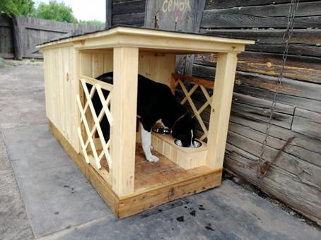 Новая будка