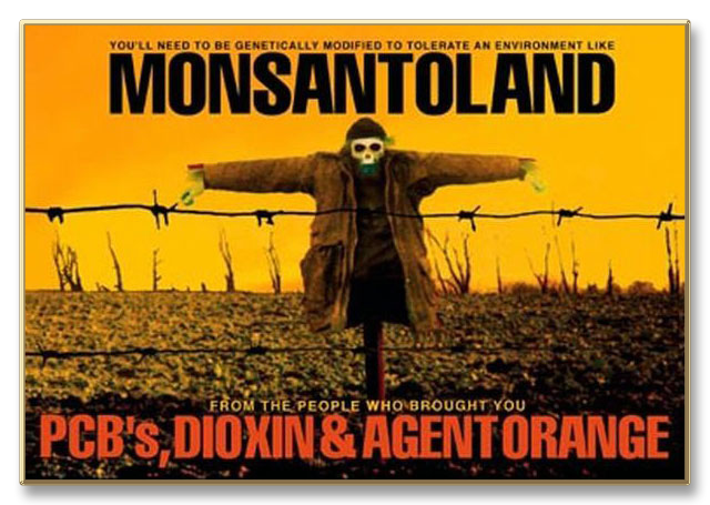 the truth behind the genetically modified organisms of monsanto