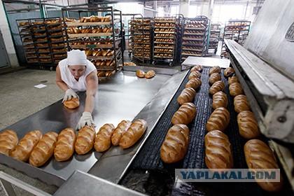 И до хлеба добрались...