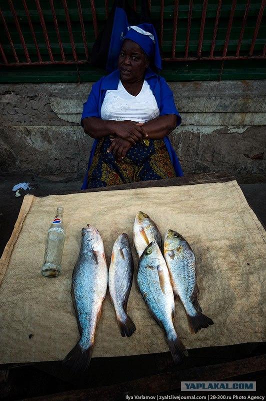 Путевые заметки. Мозамбик.