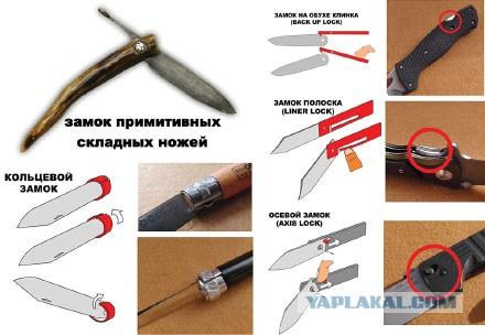 Анатомия складного ножа