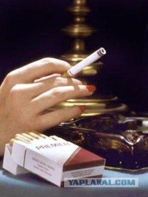 Cigarettes Marlboro sweater