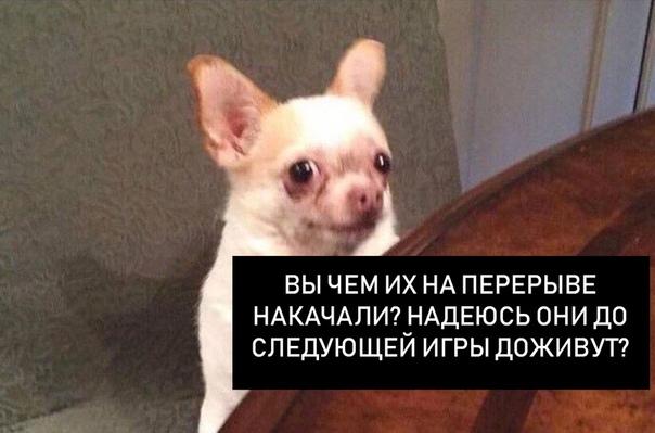 О сборной России