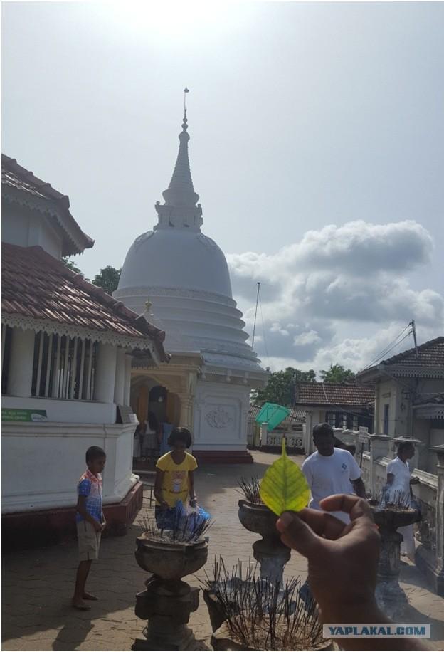 Шри-Ланка август 2016