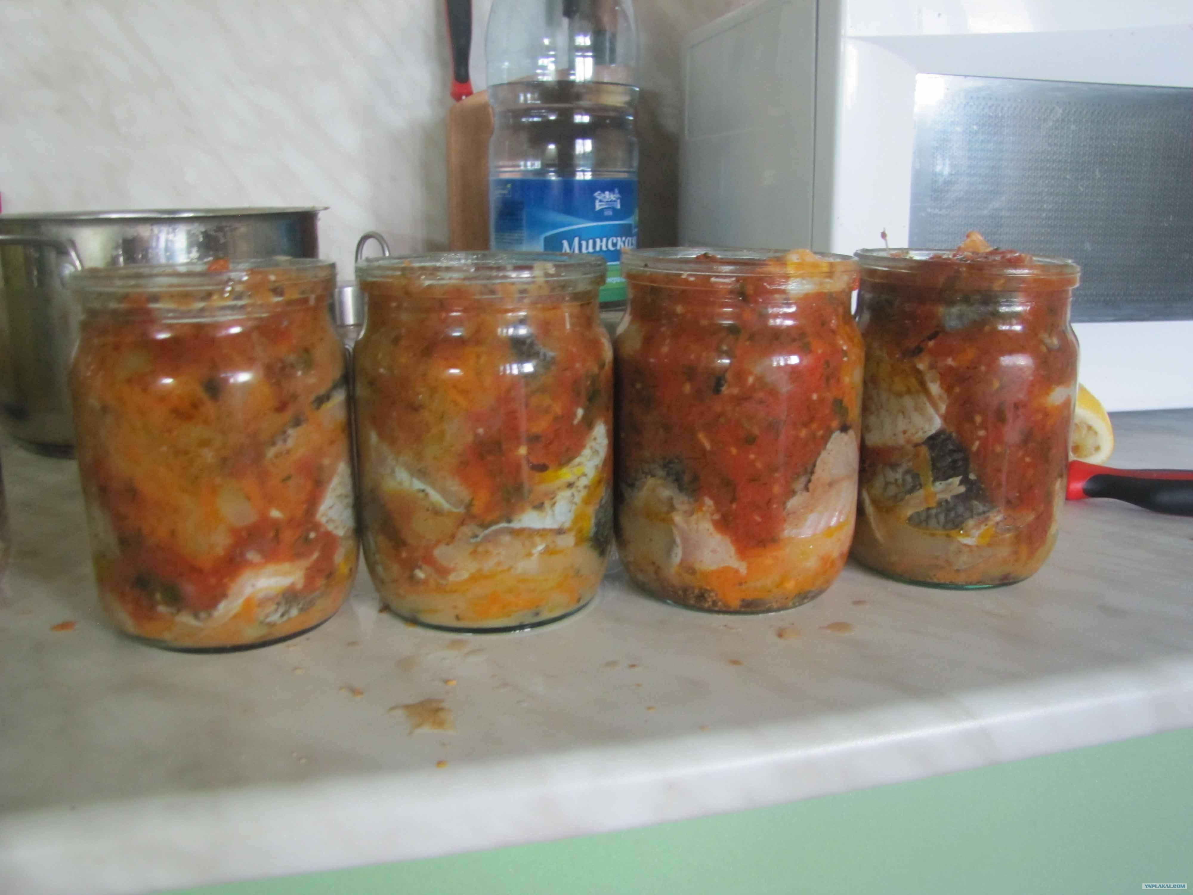 Консервы из рыбы в масле в домашних условиях