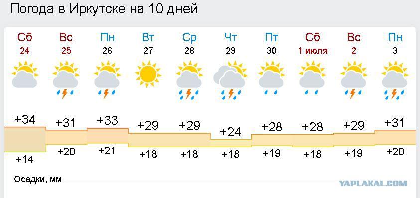 режиссер, иркутск погода на 10 поручни ограждения